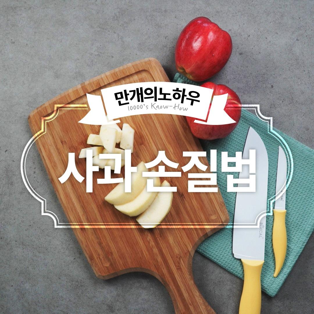사과 손질법