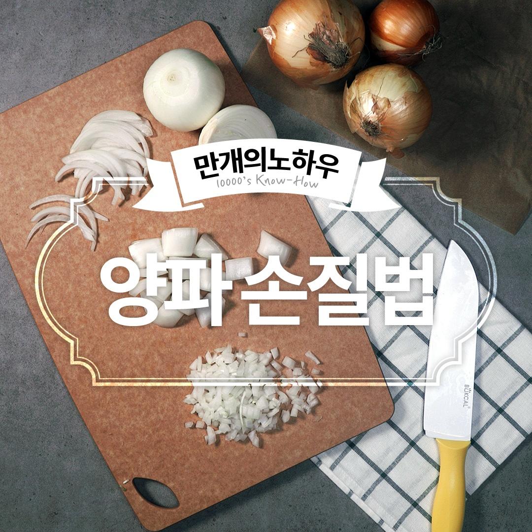 양파 손질법