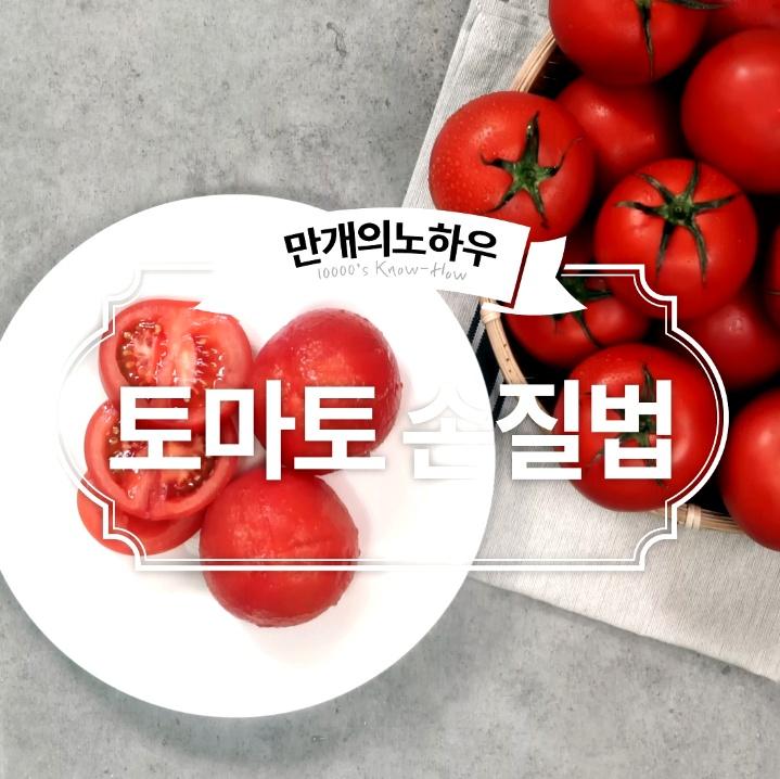 토마토 손질법