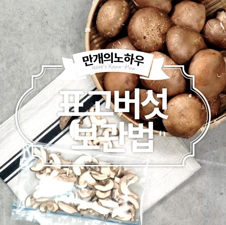 표고버섯 보관법