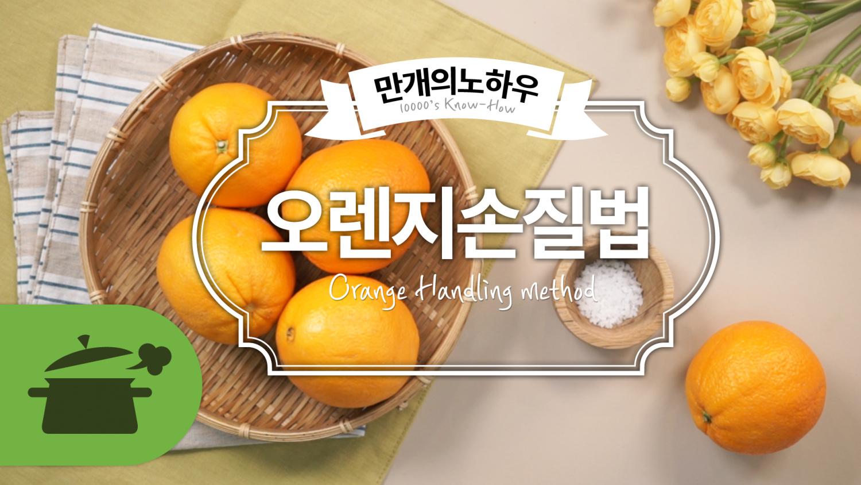 오렌지 손질법