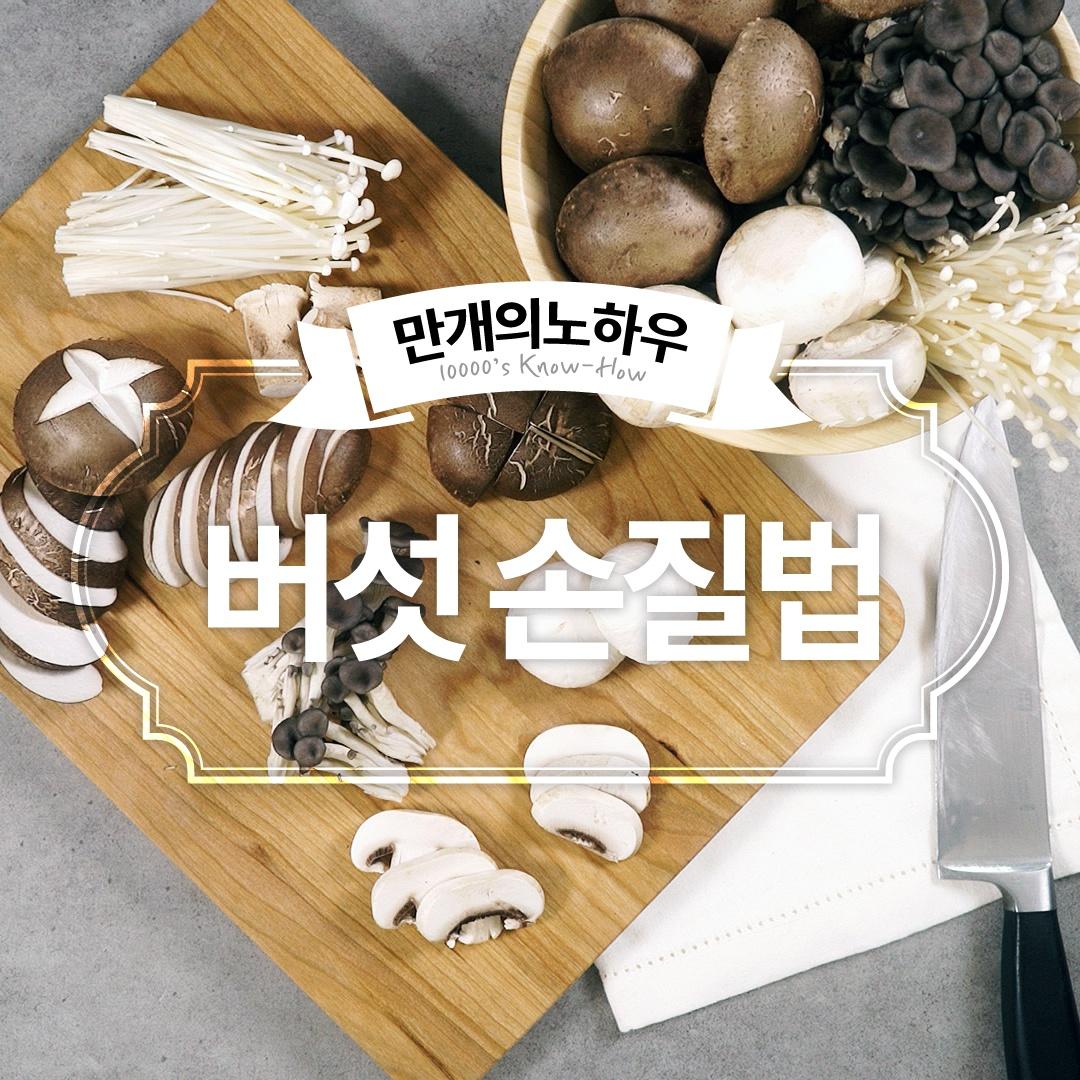 느타리버섯 손질법